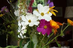 fleurs de Bach reikitrooz